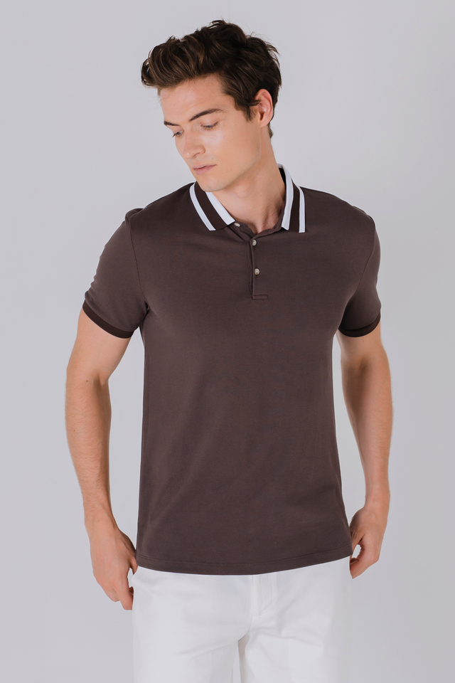 Striped Collar Polo Tee in Brown