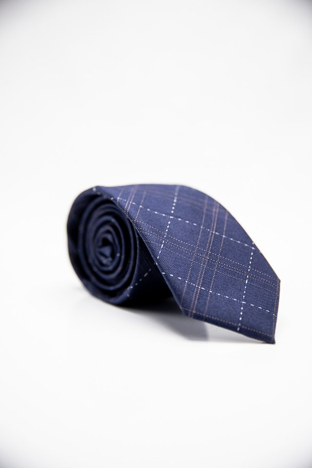 PLAID CHECKERED TIE IN BLUE